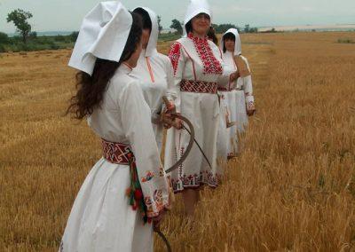 AVGANDIRA-AGRO (7)