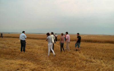 Откриване на жътва Авгандира Агро ООД